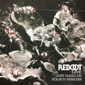 Just Hang On (Kölsch Remixes) by Reboot