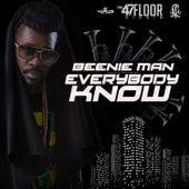Everybody Know - Single by Beenie Man