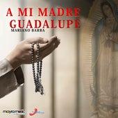 A Mi Madre Guadalupe by Mariano Barba