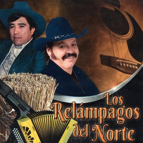 Vuelve Gaviota by Los Relampagos Del Norte