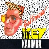 Key Key Karimba by Baltimora