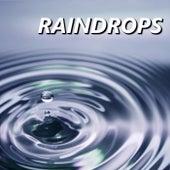 Raindrops by The Raindrops