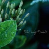 Blowing Petals by Rain Sounds (2)