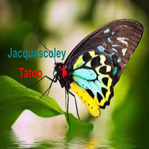 Tatoo by Jacquescoley