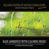 Rain Ambience With Calming Music (Nature Sounds & Music for Sleep & Relaxation) by Relaxing Sounds of Nature