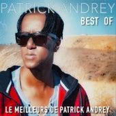 Best Of (Le meilleurs de Patrick Andrey) by Various Artists