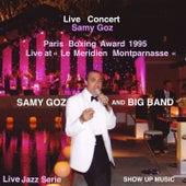 Paris Boxing Award 1995 (Live Concert) by Samy Goz