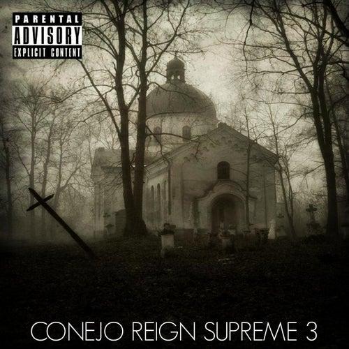 Reign Supreme 3 by Conejo
