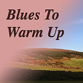 Blues To Warm You Up von Various Artists