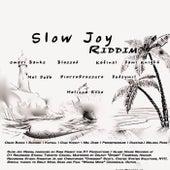 Slow Joy Riddim by Various Artists