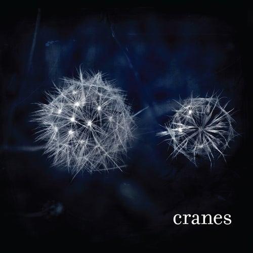 Cranes by Cranes