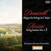 Donizetti: Allegro for Strings in C Major - Rossini: String Sonatas Nos. 1, 2 and 3 by Budapest Rossini Ensemble and Andras Kiss