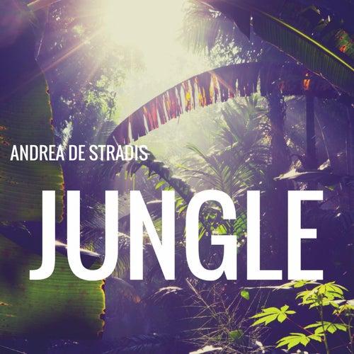 Jungle by Andrea De stradis