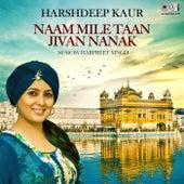 Naam Mile Taan Jivan Nanak by Harshdeep Kaur