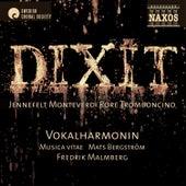 Dixit von Various Artists