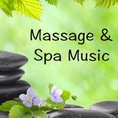 Massage & Spa Music by Meditation Spa