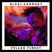 Fallen Forest (For Isaac Stern) by Oxford Philharmonic Orchestra Nigel Kennedy
