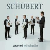 Schubert by amarcord and Eric Schneider