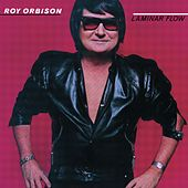 Laminar Flow by Roy Orbison