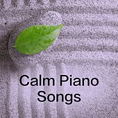 Calm Piano Songs by Reading and Study Music