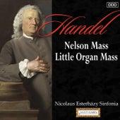 Haydn: Nelson Mass - Little Organ Mass by Various Artists