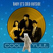 Baby It's Cold Outside (Cool Yule) von Various Artists
