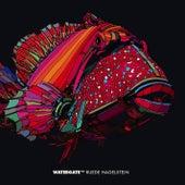 Watergate 13 - mixed by Ruede Hagelstein by Ruede Hagelstein