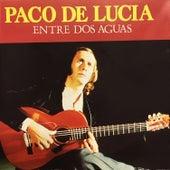 Entre Dos Aguas (20 Exitos) by Paco de Lucia