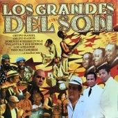 Los Grandes del Son by Various Artists