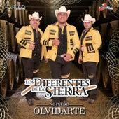 No Puedo Olvidarte by Los Diferentes De La Sierra