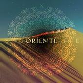 Orienté (New Oriental Trip) by Various Artists
