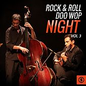 Rock & Roll Doo Wop Night, Vol. 3 by Various Artists