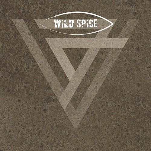 Feel This Way by Wild Spice