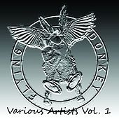 Flying Donkey, Vol. 1 by Various Artists