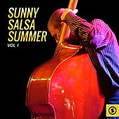 Sunny Salsa Summer, Vol. 1 by Various Artists