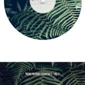 Piero Piccioni The Essential Vol. 2 by Piero Piccioni