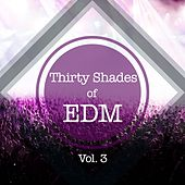 Thirty Shades Of EDM, Vol. 3 by Various Artists