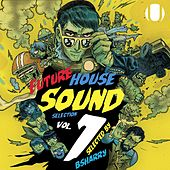 Future House Sound Selection,  Vol. 1 by Various Artists