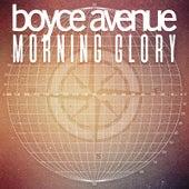 Morning Glory by Boyce Avenue