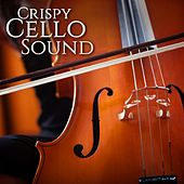 Crispy Cello Sound by Various Artists
