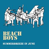 Summerbreeze in June by The Beach Boys