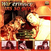 Wir erinnern uns so gern by Various Artists
