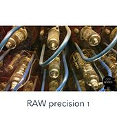 Raw Precision, Vol. 1 by Various Artists