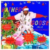 Irie Christmas (feat. Dan Zanes, Sonia De Los Santos, Danger D & Kater Ferber) by Father Goose