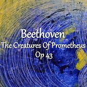 Beethoven The Creatures Of Prometheus, Op 43 by The St Petra Russian Symphony Orchestra