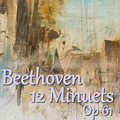 Beethoven 12 Minuets, Wo 017 by The St Petra Russian Symphony Orchestra