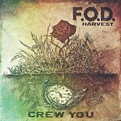 Crew You by F.O.D.