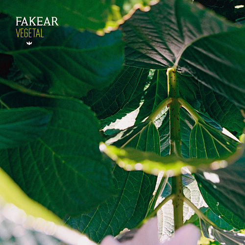 Vegetal: Offshoots EP by Fakear