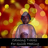 Calming Tracks for Quick Healing by Meditation Music Zone