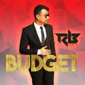 Budget by Ravi B